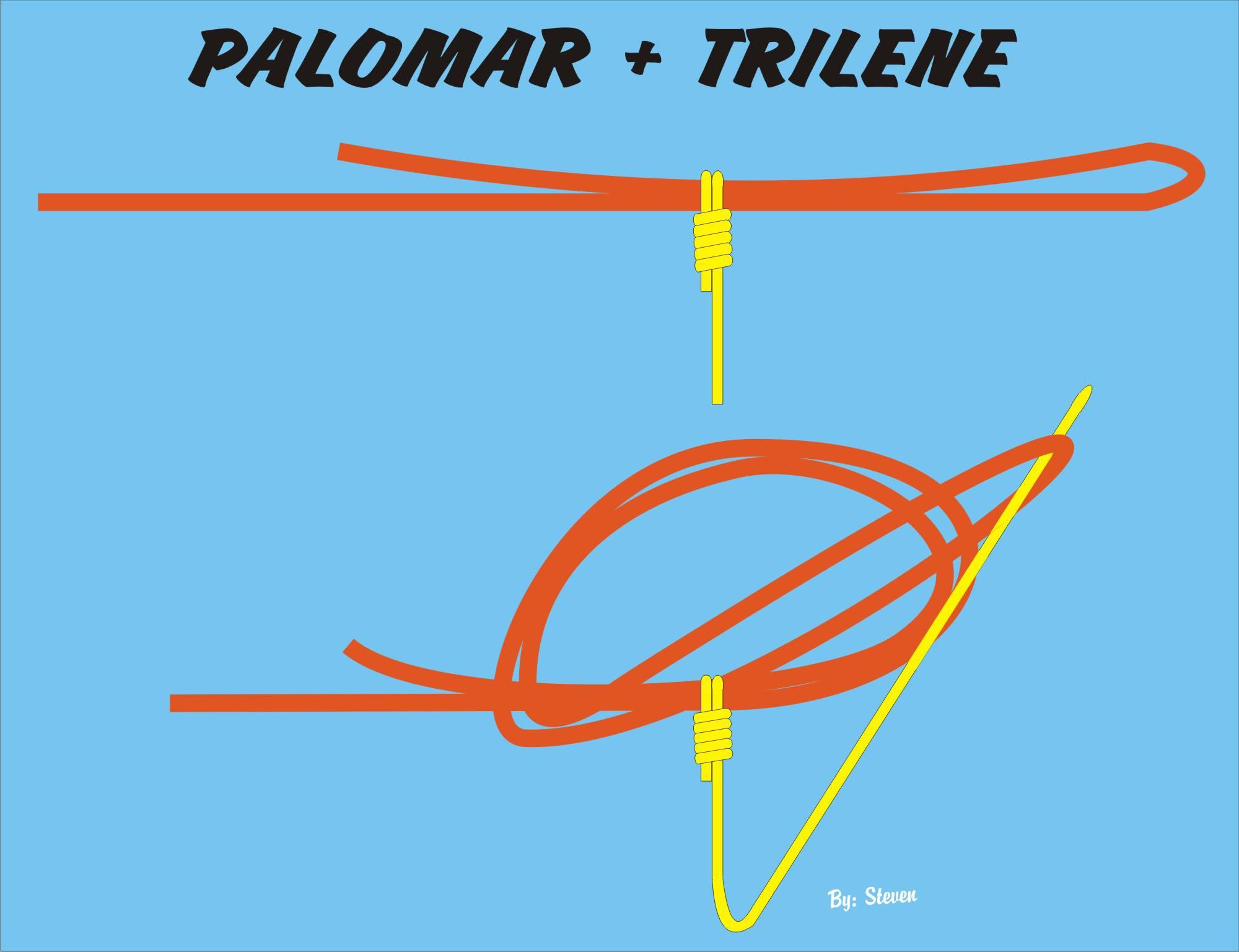 palomar + trilene