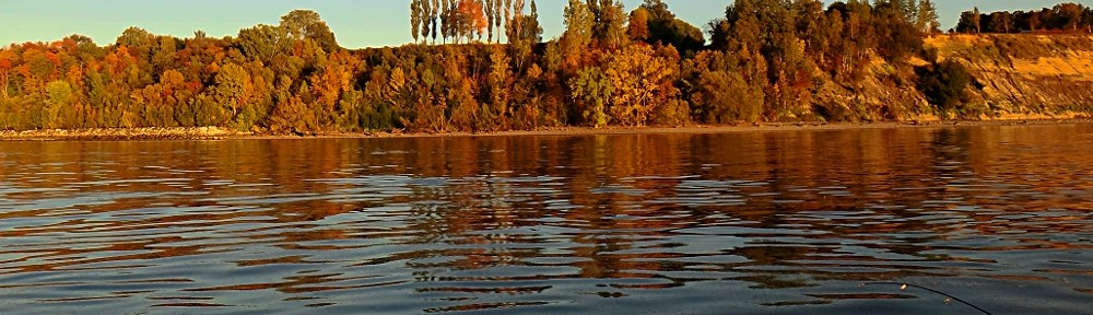 fleuve d'huile sur paysage d'automne