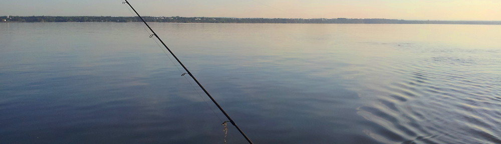 pêche à la traine...